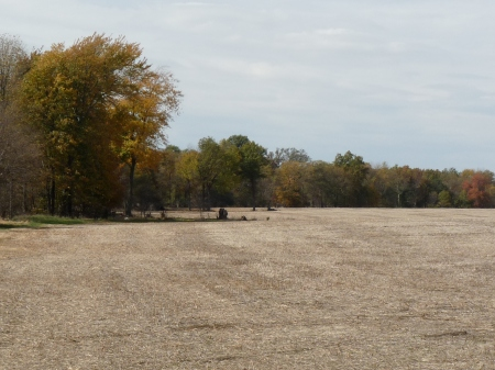 A portion of the 80 acres where the Heffernan's farmed and built a two room cabin with loft and back porch